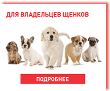 royal_canin_dry_for_puppy