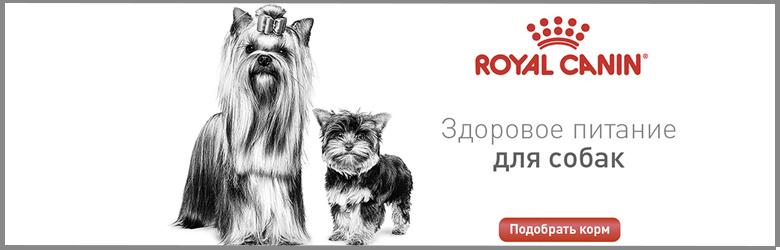 Royal Canin Urinary S/O Moderate Calorie диета для кошек