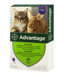 Advantage (Адвантейж) cat 80 - капли спот-он от блох