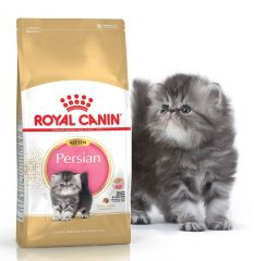 Royal Canin Kitten Persian 32 - роял канин сухой корм для котят персидской породы