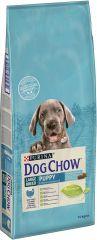 Dog Chow (Дог Чау) Puppy Large Breed сухой премиум корм с индейкой для щенков крупных пород