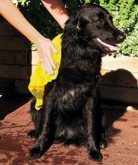 Полотенце для собак и кошек (вискоза) Трикси 2344