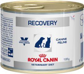 Royal Canin Recovery диета для собак и кошек в восстановительный период после болезни