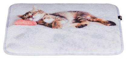 Корм 1st Choice для кошек купить с доставкой - цены
