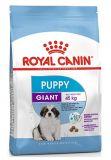 Royal Canin Роял Канин) Giant Puppy сухой корм для щенков гигантских пород от 2 до 8 месяцев