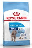 Royal Canin (Роял Канин) Maxi Junior Active сухой корм для активных щенков крупных макси пород