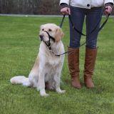 Намордник для собак тренировочный Top Trainer Trixie TX-1300