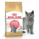 Royal Canin Kitten British Shorthair роял канин сухой корм для котят британской породы