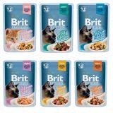 Brit Premium Fillets in Gravy for Adult Cats (пауч) Консервы для кошек Кусочки в соусе из филе: курицы, говядины, индейки, лосося или тунца