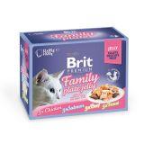Brit Premium Family Plate Jelly Влажный корм Набор паучей для кошек Кусочки в ЖЕЛЕ 12шт. по 85 г