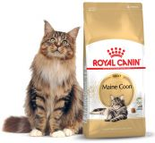 Royal Canin Мaine Coon 31 сухой корм роял канин для взрослых крупных кошек, для мейн кунов