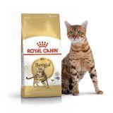 Royal Canin Bengal Adult Сухой корм роял канин для взрослых кошек породы Бенгальская